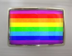 Boucle de ceinture Rainbow rectangle chrome